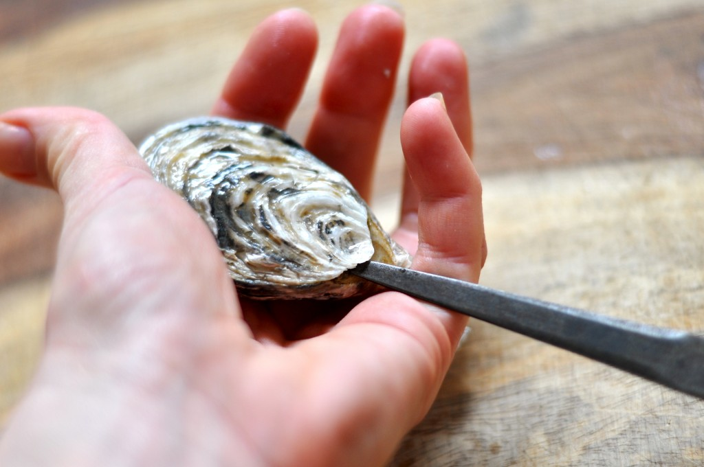 Gently wheedle tip of oyster knife in the hinge
