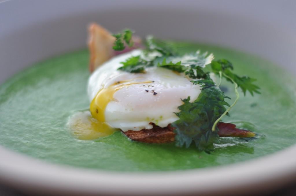 Nettle & Green Garlic Soup