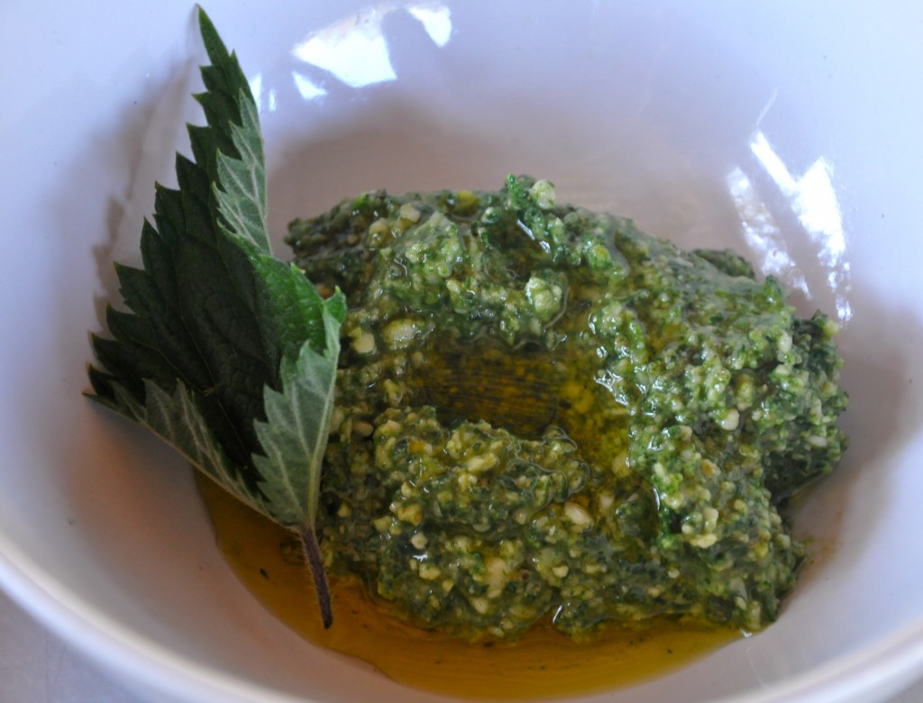 Nettle Pesto: a side dish for my side dish