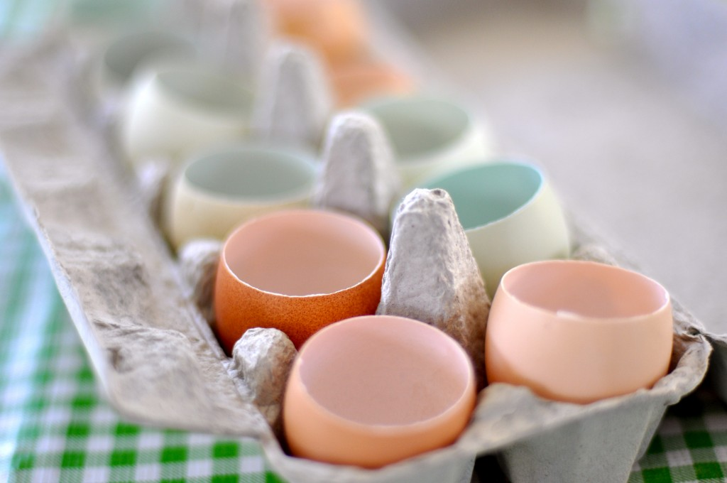 Egg Shell Cups