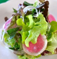 Watermelon Radish & Mint Salad