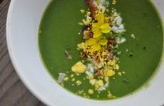 Green Garlic & Nettle Vichyssoise