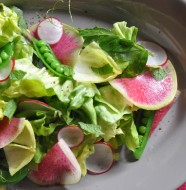 Spring Radish & Sweet Pea Salad with baby lettuces, mint, and pea tendril