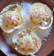 Bay Shrimp Salad Appetizer with Fennel & Radish, an elegant appetizer or starter for Spring!